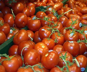 tureckie-pomidory-uzhe-nelzya-kupit-v-rossii